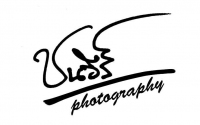 cphotography's profile
