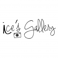 ice.gallery's profile
